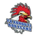FK Kohouti Rokycany – černí